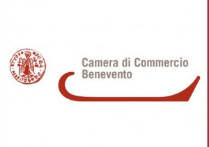 camera_commercio_benevento_ logo